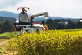 最小限の農薬使用に徹した、減農薬特別栽培米